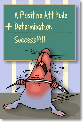 Positive Attitude + Determination = Success!!!! - Classroom Motivational Poster Print Gift