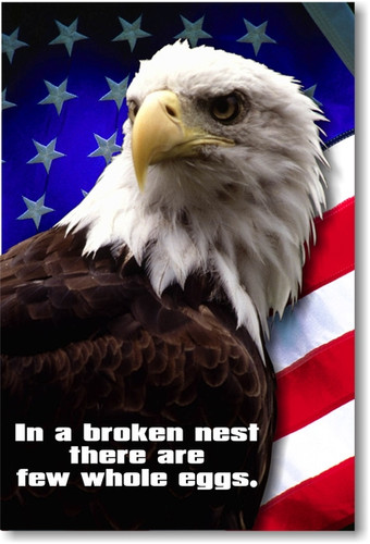 In a Broken Nest There Are Few Whole Eggs - Classroom Motivational Poster Print Gift