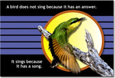 A Bird Does Not Sing Because It Has the Answer - Classroom Motivational Poster Print Gift