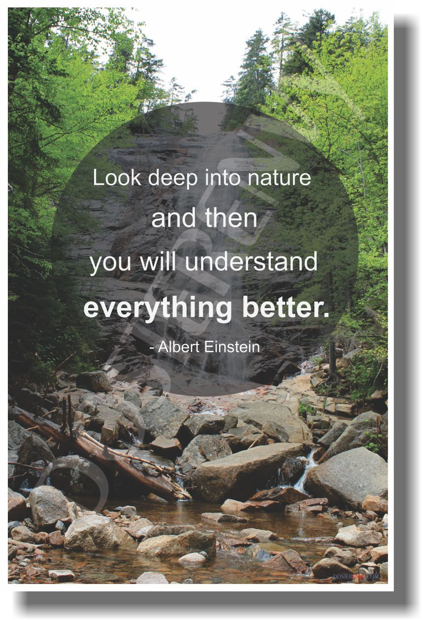 Look Deep Into Nature And Then You Will Understand Everything Better