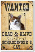 PosterEnvy - Wanted - Schrodingers Cat