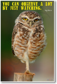 Owl on One Leg - You Can Observe a Lot By Just Watching - Yogi Berra - NEW Humor PosterEnvy Poster