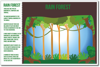 Rainforest Science Rain Forest Amazon NEW World Habitat Ecosystems Poster (ms271)