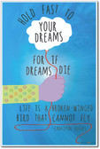 Hold Fast To Your Dreams - Langston Hughes - NEW Classroom Motivational Poster (fp332)