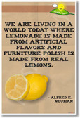 Alfred E. Neuman Health Quote - NEW Humorous Quote Poster