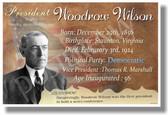 Presidential Series - U.S. President Woodrow Wilson - New Social Studies Poster (fp397) American History PosterEnvy WWI World War 1