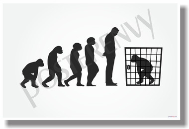 Cage Evolution New Darwin Humor Poster (hu309) PosterEnvy Ape Prison Jail