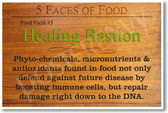 5 Faces of Food Healing Bastion NEW Healthy Health Foods and Nutrition Poster (he062)