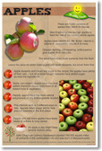 Healthy Foods Apples fruit NEW Healthy Foods Nutrition Poster diet healing health lunch snacks (he065)