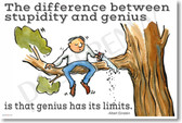 The Difference Between Stupidity and Genius Is That Genius Has Its Limits Albert Einstein NEW Funny POSTER (hu333) cutting tree chopping gravity stupid