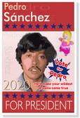 Pedro Sanchez for President 2020 Napoleon Dynamite funny NEW Humor Joke Poster (hu365)
