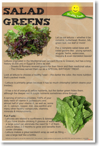 Salad Greens - NEW Health and Safety POSTER (he073)