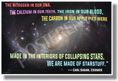 The Nitrogen in our DNA We're Made of Starstuff Carl Sagan New Classroom Motivational Poster (cm1188) posterenvy carbon iron blood astronomy science
