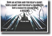 Sow an action and you reap a habit Sow a habit and you reap a character Sow a character and you reap a destiny William James NEW Classroom Motivational Poster (cm1201) escalator