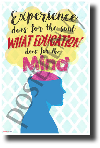 Experience Does for the Soul what Education Does for the Mind- NEW Classroom Motivational Poster (cm1230) PosterEnvy Poster