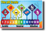 The pH Scale - NEW Classroom Science Poster
