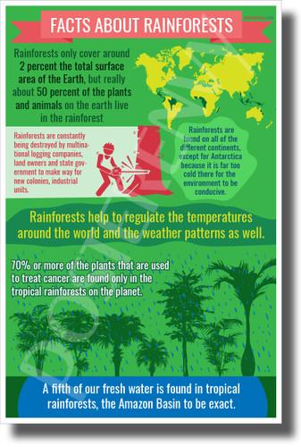 Rainforest Facts - New Environmental Awareness POSTER