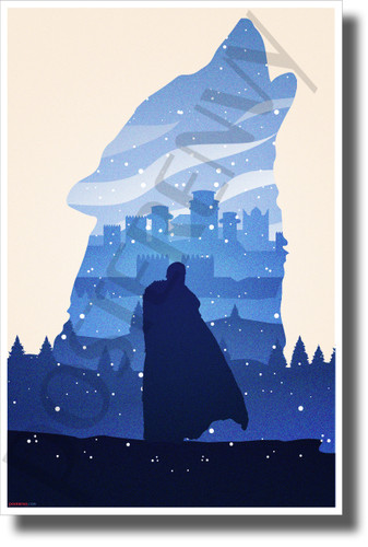 The King in the North - Jon Snow - NEW Novelty GOT TV Show POSTER