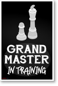 Grand Master in Training  - NEW art games POSTER