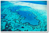 Great Barrier Reef Endangered Habitat Australia Pacific Ocean Ecology Poster