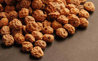 Raw Tiger Nuts-1 lb.