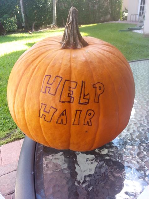 Natural DHT blockers , How To Regrow Hair Naturally, Pumpkin Seeds for hair regrowth