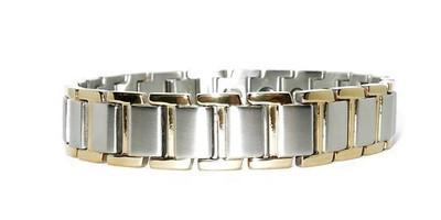 Success Stainless Steel Magnetic  Bracelet