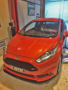 Impact proof splitter Fiesta ST180