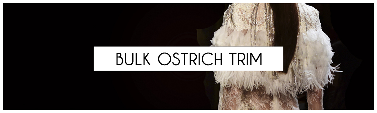 bulk-ostrich-trim-header-picture-edited-1.jpg
