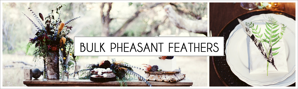 bulk-pheasant-header-picture-edited-1.jpg