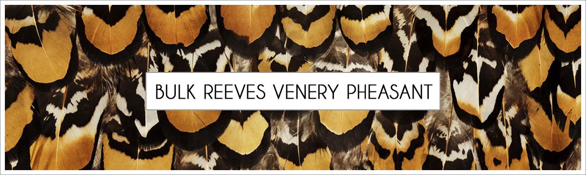 bulk-reeves-venry-pheasant-header-picture-edited-1.jpg