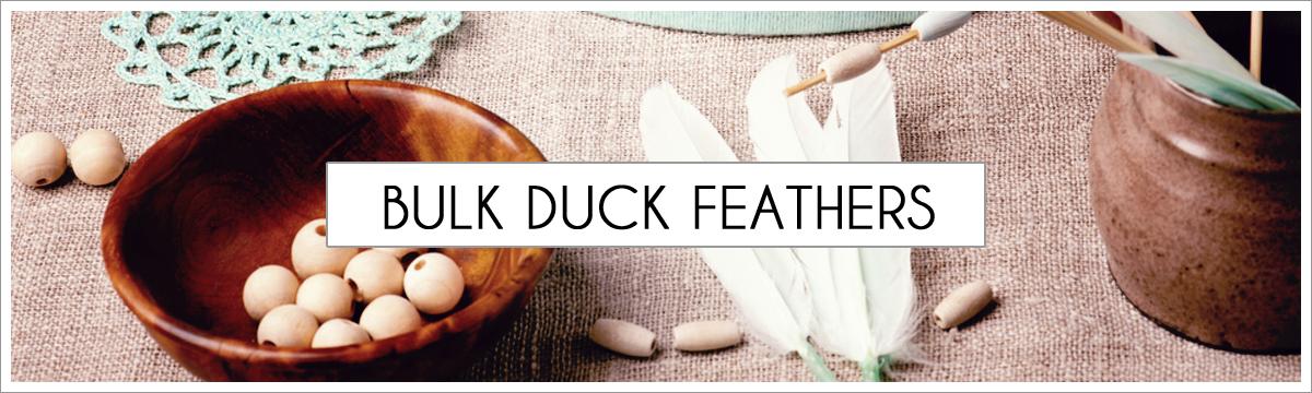 bulk-types-of-duck-main-header.jpg