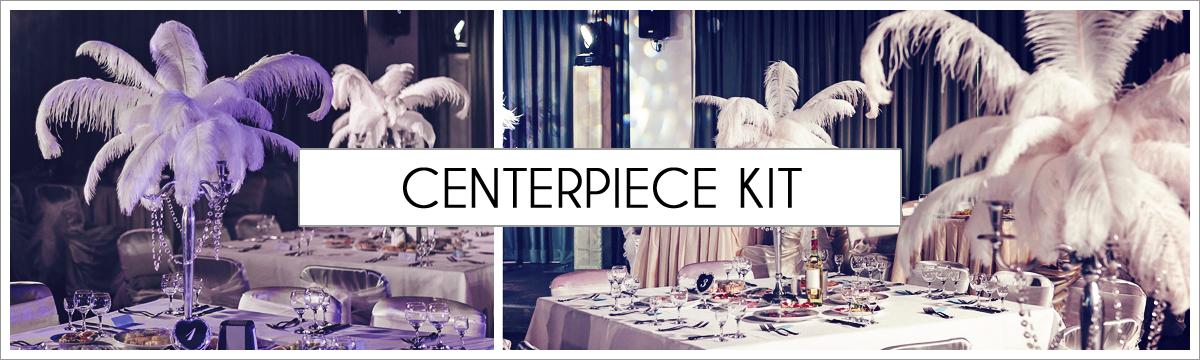 centerpiece-kit-header-picture-edited-1.jpg