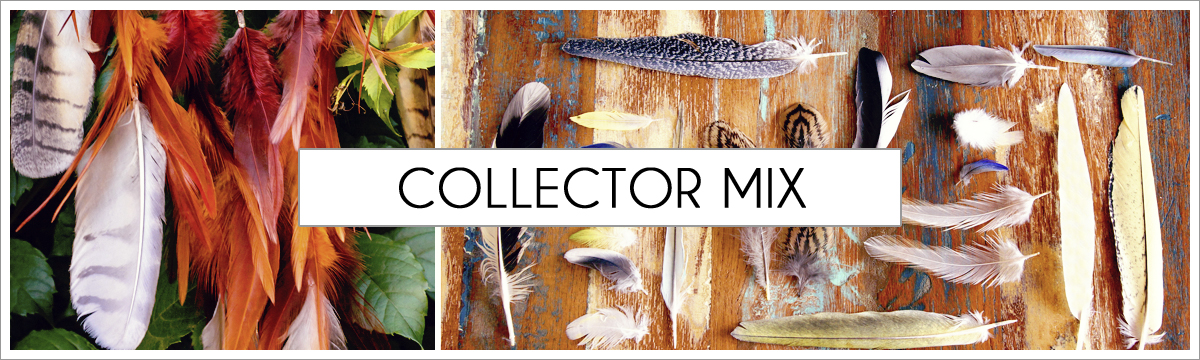 collector-mix-header-picture-edited-1.jpg