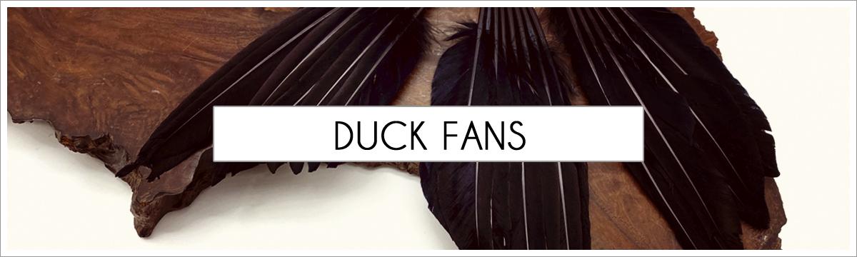 fan-duck-picture-header2.jpg