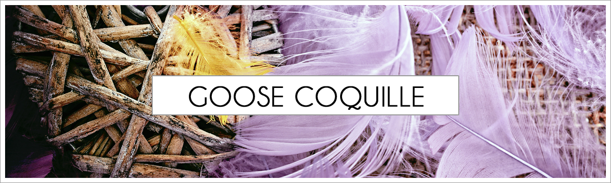 goose-coquille-main-picture-header2.jpg