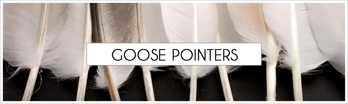 goose-pallet-trim-picture-header2.jpg