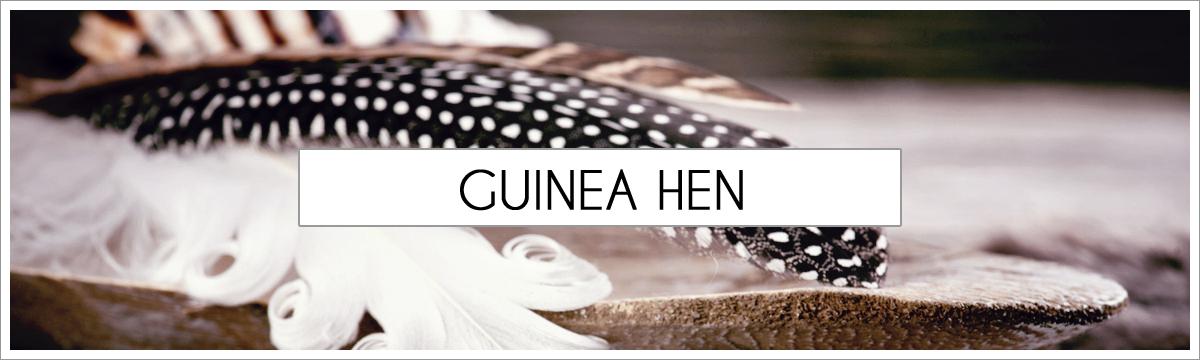 guinea-hen-header-picture-edited-1.jpg