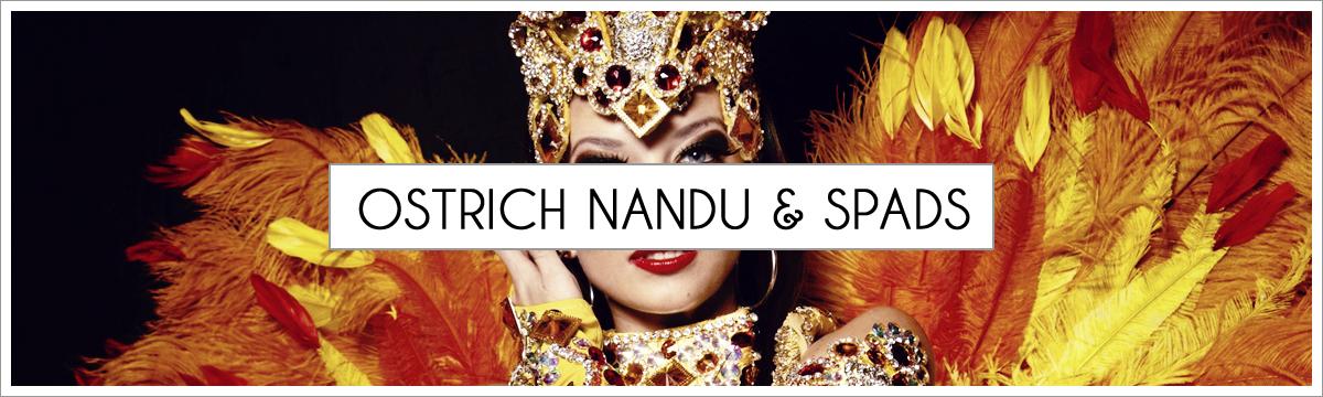 nandu-and-spads-header-picture-edited-2.jpg
