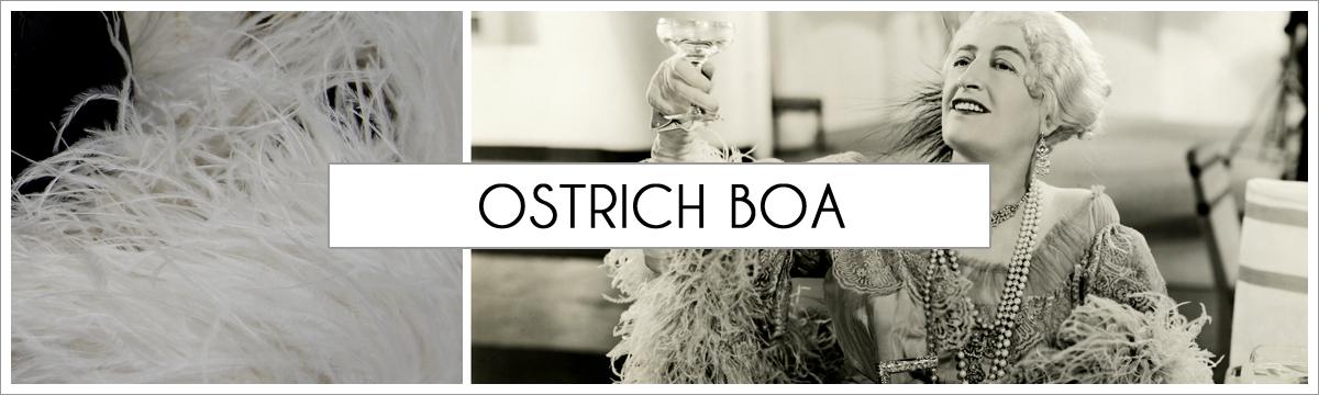 ostrich-boa-header-picture-edited-1.jpg