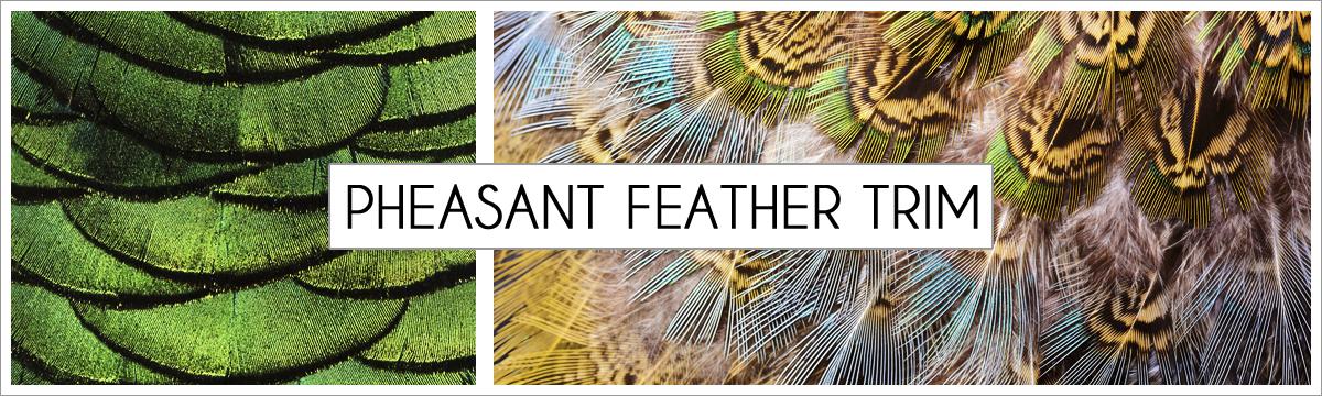 pheasant-trim-header-picture-edited-1.jpg