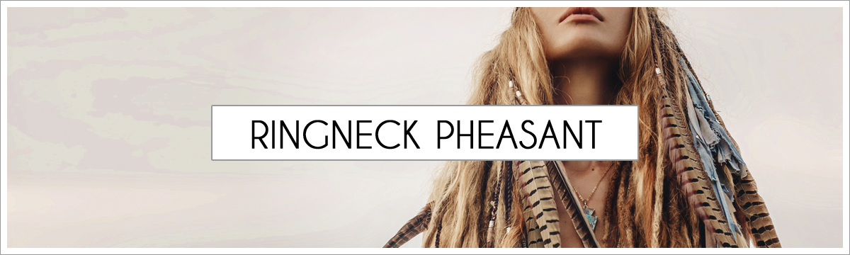 rignneck-pheasant-header-picture-edited-1.jpg