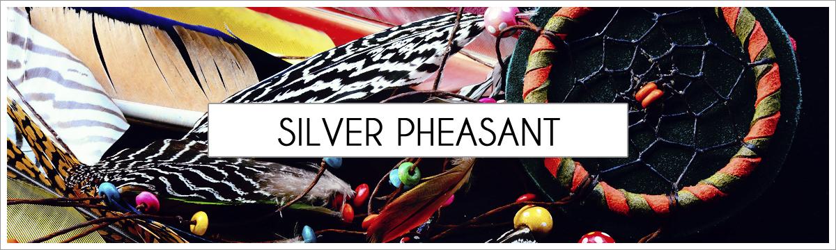 silver-pheasant-header-picture-edited-1.jpg