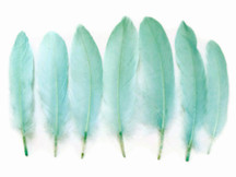 1 Pack - Aqua Green Goose Satinettes Loose Feathers 0.3 Oz.