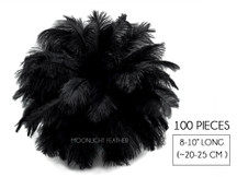 "100 Pieces - 8-10"" Black Ostrich Dyed Drab Body Wholesale Feathers (Bulk)"