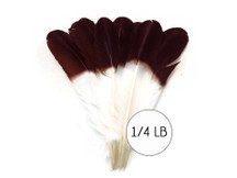 "1/4 lbs. - Brown Tipped Tom Turkey Rounds Imitation ""Eagle"" Wholesale Feathers (Bulk)"