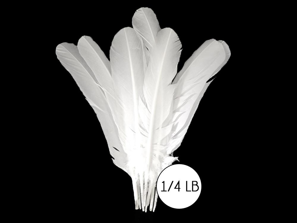 NATURAL 100 Pcs GUINEA Plumage 1-4 Feathers Black /& White