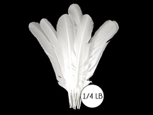 1/4 Lb - White Turkey Tom Rounds Secondary Wing Quill Wholesale Feathers (Bulk)