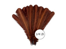 1/4 Lb - Brown Turkey Tom Rounds Secondary Wing Quill Wholesale Feathers (Bulk)