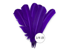 1/4 Lb - Purple Turkey Tom Rounds Secondary Wing Quill Wholesale Feathers (Bulk)